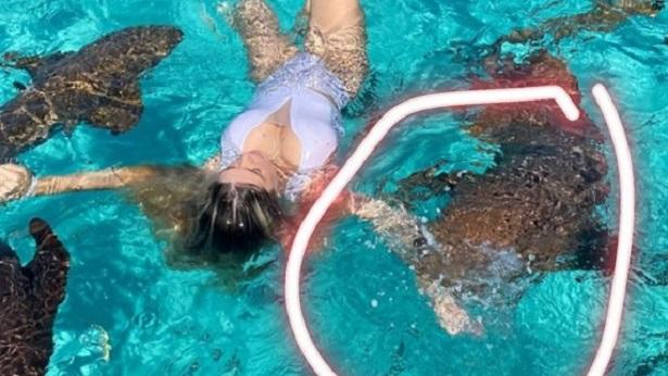 Blogueira brasileira é mordida por tubarão enquanto tirava foto nas Bahamas - celebridade