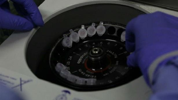 Ministro da Saúde confirma 1º caso de coronavírus no Brasil - brasil