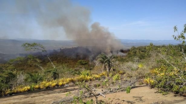 Tartaruga: Tempo quente e ventos fortes fazem incêndio voltar - vale-do-jiquirica, tartaruga, destaque, bahia