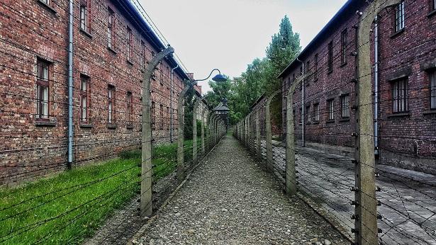 Dia Internacional em Memória das Vítimas do Holocausto é celebrado nesta quarta, 07 - mundo
