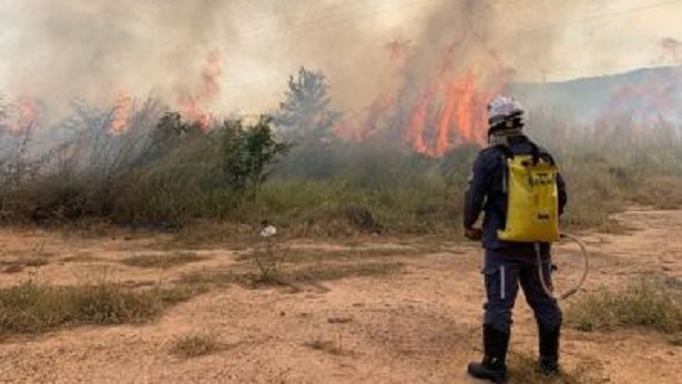 Barreiras: Incêndio atinge área de vegetação às margens da BR-135 - barreiras, bahia