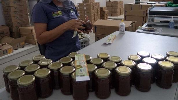 Cooperativas da Agricultura Familiar da Bahia passarão a comercializar na plataforma Mercado Livre - noticias, empreendedorismo, destaque