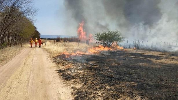 Ibotirama: Incêndio atinge área de vegetação na zona rural - noticias, ibotirama, bahia
