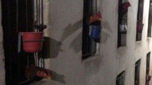 Livramento de Nossa Senhora: Polícia resgata galos usados em rinha - policia, livramento-de-nossa-senhora, bahia