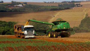 Safra de grãos na Bahia deve alcançar recorde de 10,4 milhões de toneladas este ano - bahia