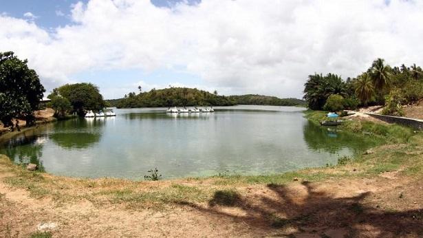 Governo inicia elaboração do Plano de Manejo do Parque de Pituaçu - bahia