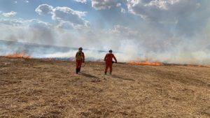 Bombeiros combatem incêndios florestais em Campo Alegre de Lourdes, Morpara e Luís Eduardo - luis-eduardo-magalhaes, bahia