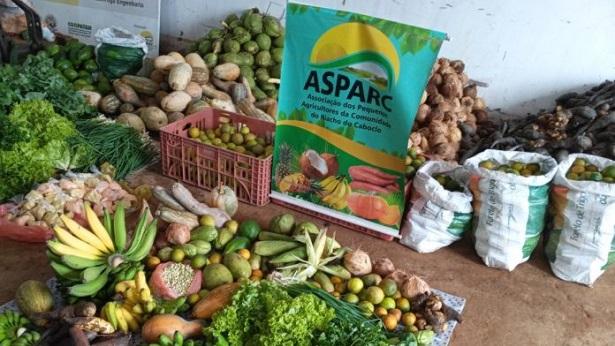 Presidente Tancredo Neves: Agricultores da Associação do Riacho do Caboclo comercializam alimentos para o PAA - presidente-tancredo-neves, noticias
