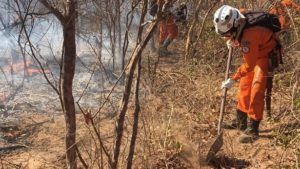 Bombeiros de Salvador são enviados para combater incêndio em Barreiras - salvador, barreiras, bahia