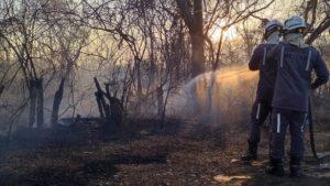 Bahia registra 42 focos de incêndio nesta quarta; Barra segue com mais queimadas - barra, bahia