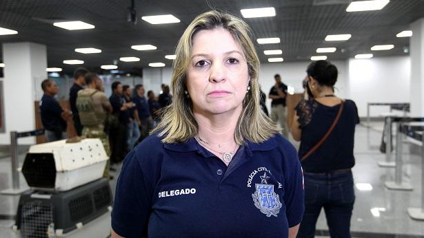 DHPP prende suspeitos de envolvimento na chacina em festa paredão em Salvador - salvador, policia, bahia